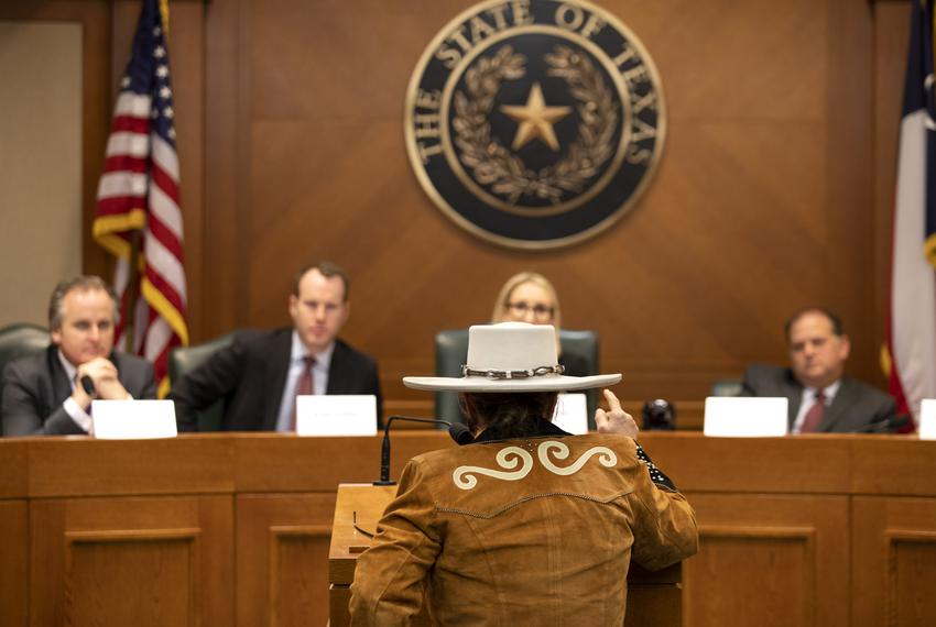 Dr. Alma Arredondo addresses the State Preservation Board at the Capitol on Jan. 25, 2019. Arredondo argued the state erred …