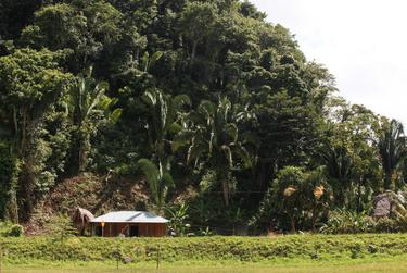 The Xol and Bol home in San Miguel Limón, in the Guatemalan state of Alta Verapaz, where David Xol works on a plantation cutting African palm from 5 a.m. to 4 p.m. six days a week.