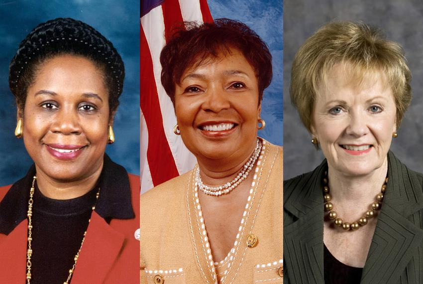Of 38 members, only three women — U.S. Reps. Sheila Jackson Lee, Eddie Bernice Johnson and Kay Granger — represent Texas i...