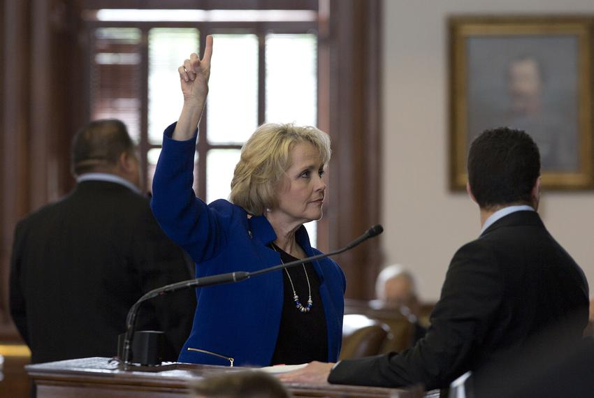 State Rep. Cindy Burkett, R-Sunnyvale votes on an amendment in the Texas House on May 19, 2017.
