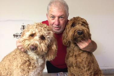 Donna Boatright finally found time to take a day off and give her Labradoodles, Major (left) and Bo Henry (right) haircuts. Her husband Kent got one too.