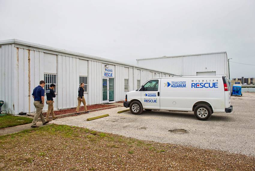 The Texas State Aquarium Wildlife Rescue current facility is located in a metal building away from the aquarium's campus.