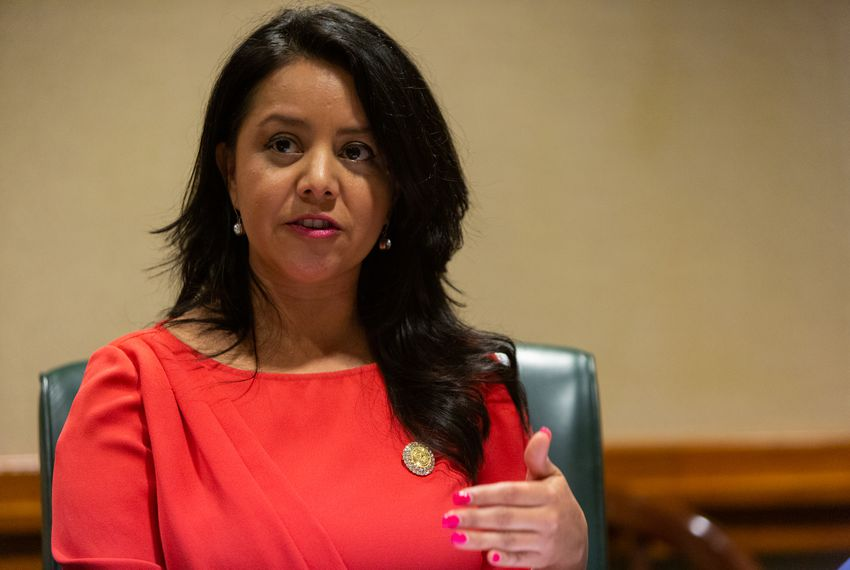 State Rep. Victoria Neave, D-Dallas, owes more than $26,000 in property taxes, according to a lawsuit.
