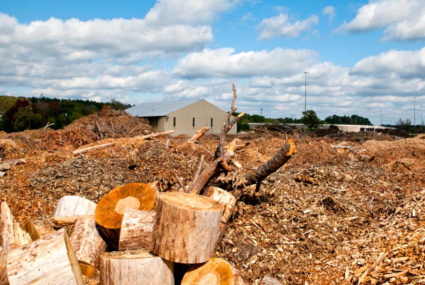 This woody debris will fuel a biomass power plant in Lufkin, the first of its kind in Texas, which is expected to begin full…