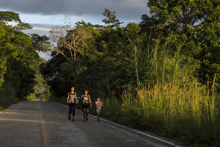 "Honduran migrants walk through highway México 307 on Oct. 21 near Palenque, Chiapas. The highway is also known by the locals as ""El gran corredor del pacífi..."