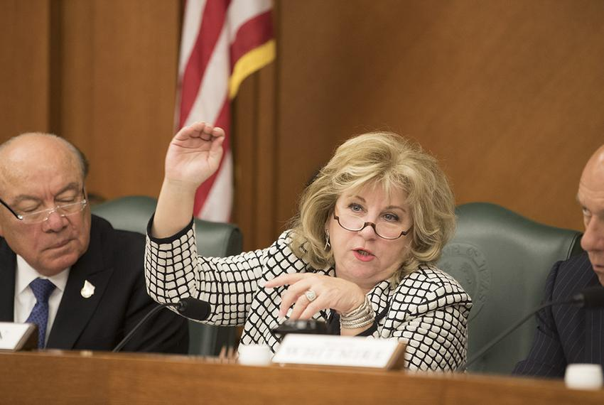 State Sen. Jane Nelson, R-Flower Mound, explains the benefits of Senate Bill 19 during a Saturday meeting of the Senate Fina…