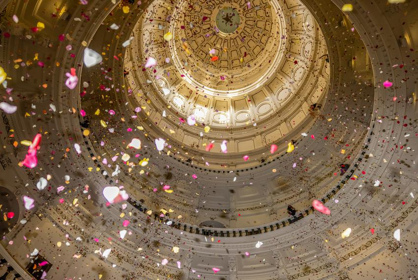 """Youth activists deploy over 200,000 rose petals from the capitol rotunda to protest against what they describe as """"Extremist…"""