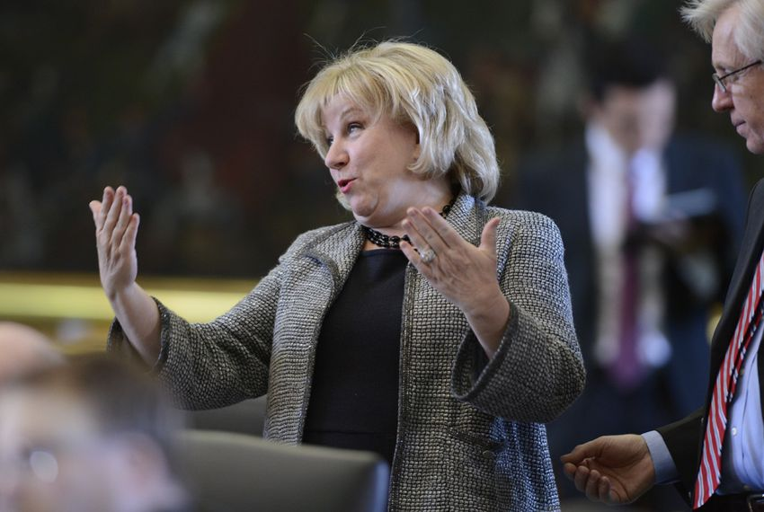 Sen. Jane Nelson reacts as her SB 7, a Medicaid reform bill passes the Senate on March 25, 2013.