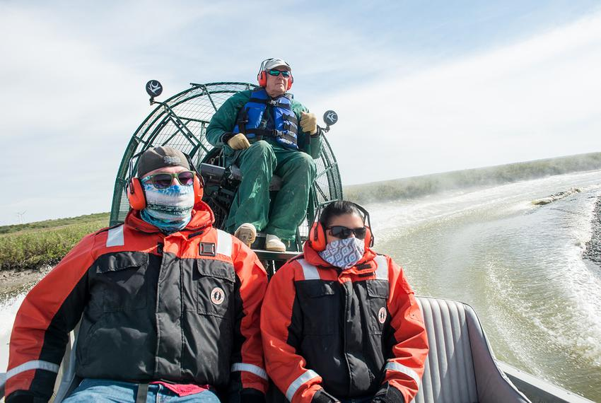 Researchers from the Harte Research Institute for Gulf of Mexico Studies travel by airboat to take water samples of the Nuec…