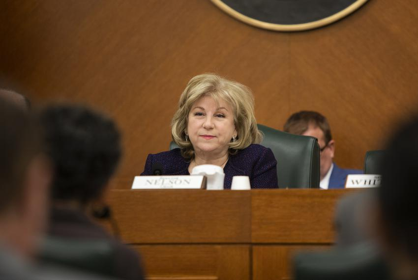 Chairmain of the Senate Finance Committee and state Sen. Jane Nelson, R-Flower Mound, during a committee meeting on April 3,…