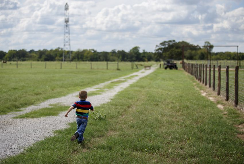 Five-year-old Cainen Calhoun runs to catch up to his father Charlie on his family's land in Bedias, Texas, on Sept. 15, 2018. A proposed high-speed rail would be built along the existing power line right-of-way.
