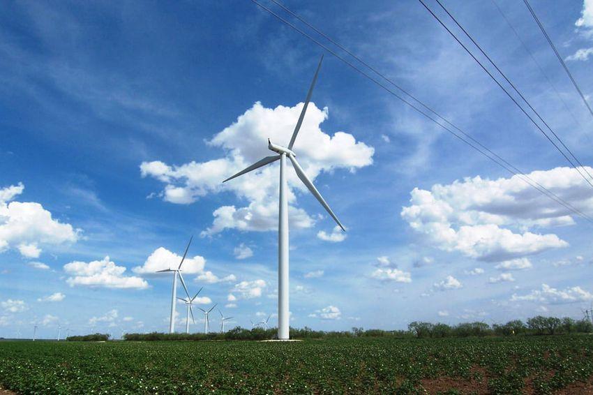 A wind farm outside Lorraine, Texas, on Aug. 10, 2006.
