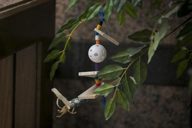 A toy hangs from an indoor plant in Texas A&M's Moore/Connally Building in College Station on Friday, Aug. 9, 2019. People have tied treats and toys for the birds on several of the trees in the building.