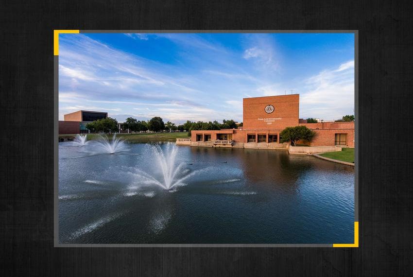 Gee Lake at the Texas A&M University-Commerce campus.