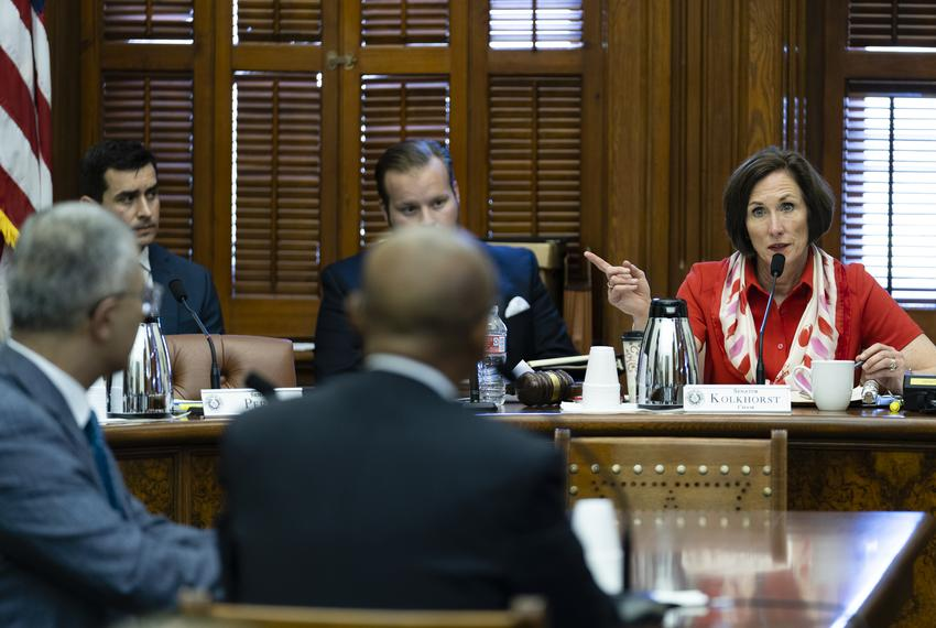 State Sen. Lois Kolkhorst, R-Brenham, Chair of the Senate Committee on Health & Human Services, listens to CEO of Harris Hea…