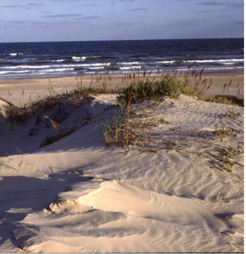 Texas beach