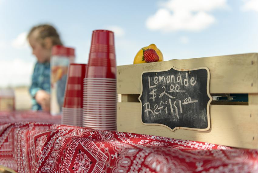 Focus on sign at lemonade stand. A lemon, strawberry and pile of red plastic cups in foreground. Out of focus girl in backgr…