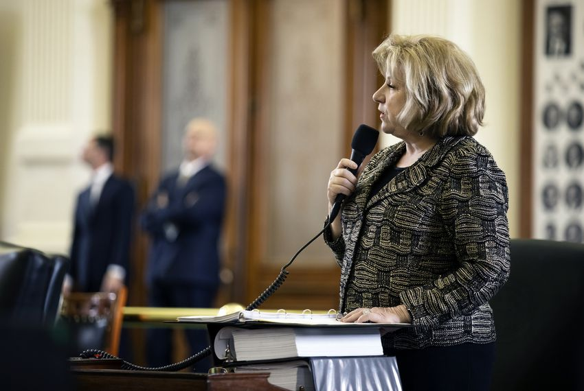Sen. Jane Nelson, R-Flower Mound, introduces SB 3 on the Senate.