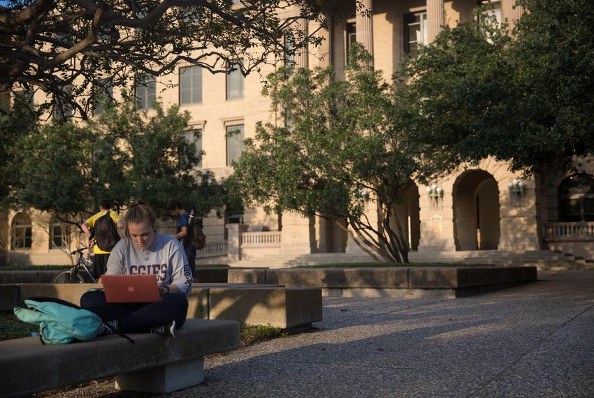 Student at Texas A&M University, College Station, TX