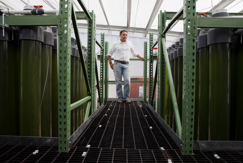 The AlgaEternal Facility located on the University of Texas Pickle Research Campus with Chief Scientist Michael Jochum.