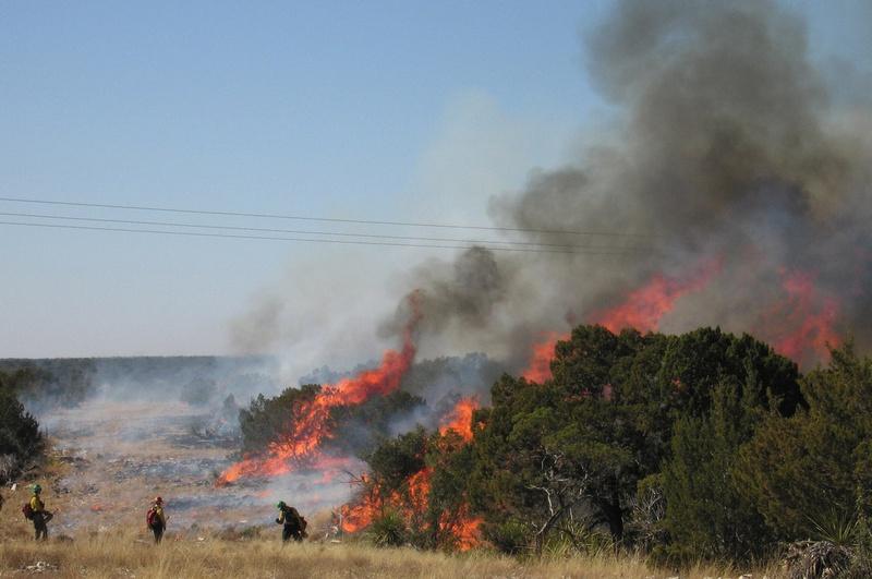 Prescribed burning on Walker Ranch in Crockett County - January 25, 2009