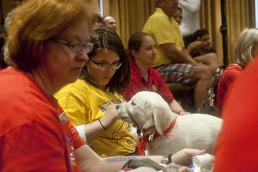 Trainers with the Puppy Jake Foundation brought puppies to Rick Perry's Ride with Rick event in at Hotel Pattee in Perry, Iowa, on June 6, 2015. Puppy Jake trains service dogs for wounded veterans.
