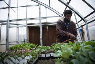 Arthur McDade IV waters the We Over Me farm greenhouse as part of his working program at Paul Quinn College on Nov. 11, 2019.