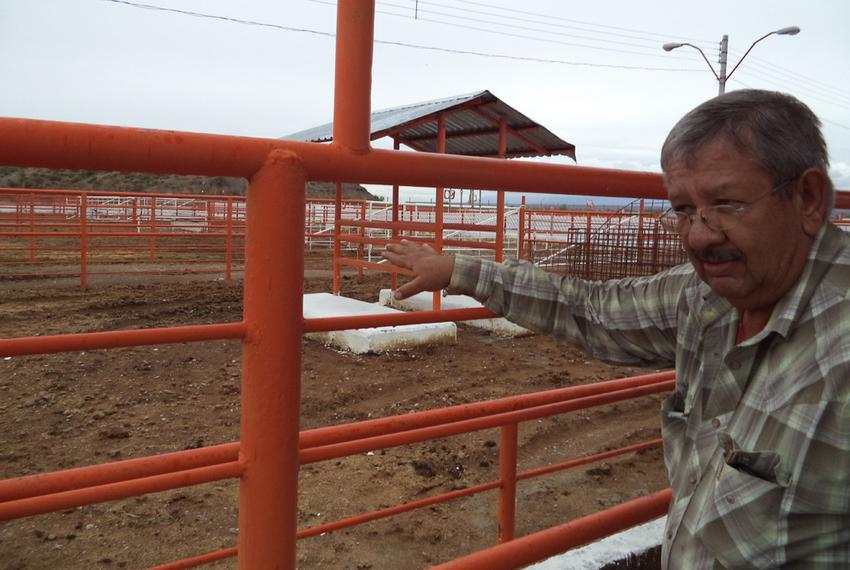 Veterinarian and cattle buyer Jesús Baca discusses how cattle were inspected before the USDA pulled its American inspectors …