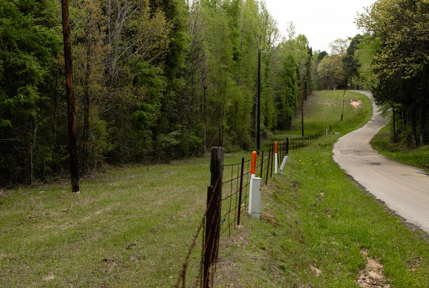 A heavily wooded area (left) of a property off of CR 4515 near Athens that the owners got designated as an ecolab research a…