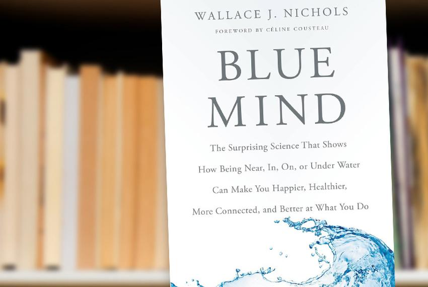 Blue Mind: The Surprising Science that Shows How Being Near, In, On, or Under Water Can Make You Happier, Healthier, More Co…