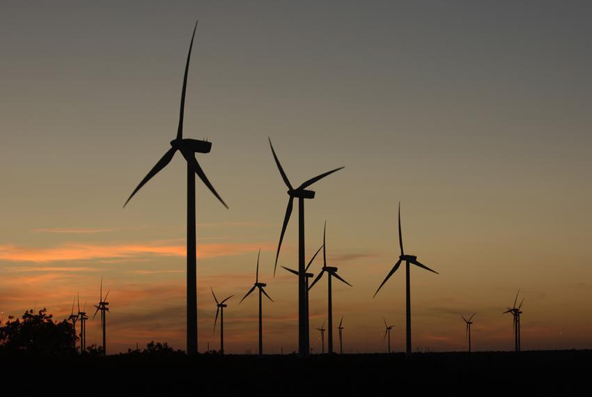 The Buffalo Gap Wind Farm in Nolan County.