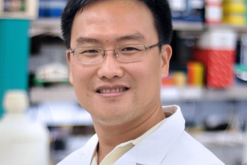 Dr. Xiang Zhang is an associate professor of molecular and cellular biology at the Lester and Sue Smith Breast Center at t...
