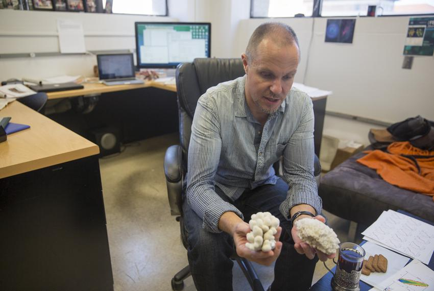 University of Texas at Austin professor Misha Matz is using crowdfunding to raise money for his research into the best ways …