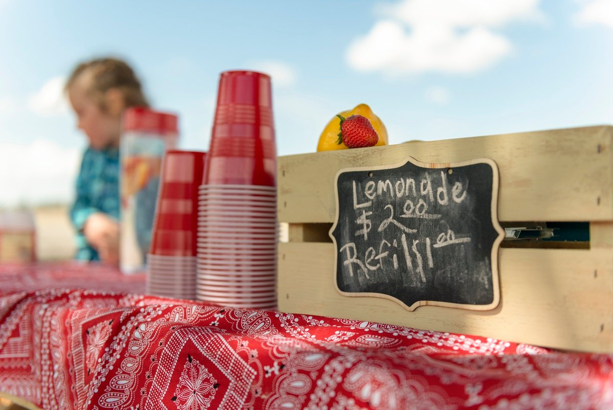 Texas Gov. Greg Abbott signs bill declaring children's lemonade stands legal