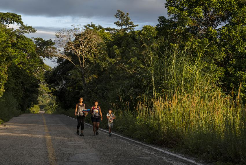 Honduran migrants walk through highway México 307 on Oct. 21 near Palenque, Chiapas. The highway is also known by the locals…