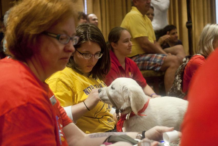 Trainers with the Puppy Jake Foundation brought puppies to Rick Perry's Ride with Rick event in at Hotel Pattee in Perry, ...