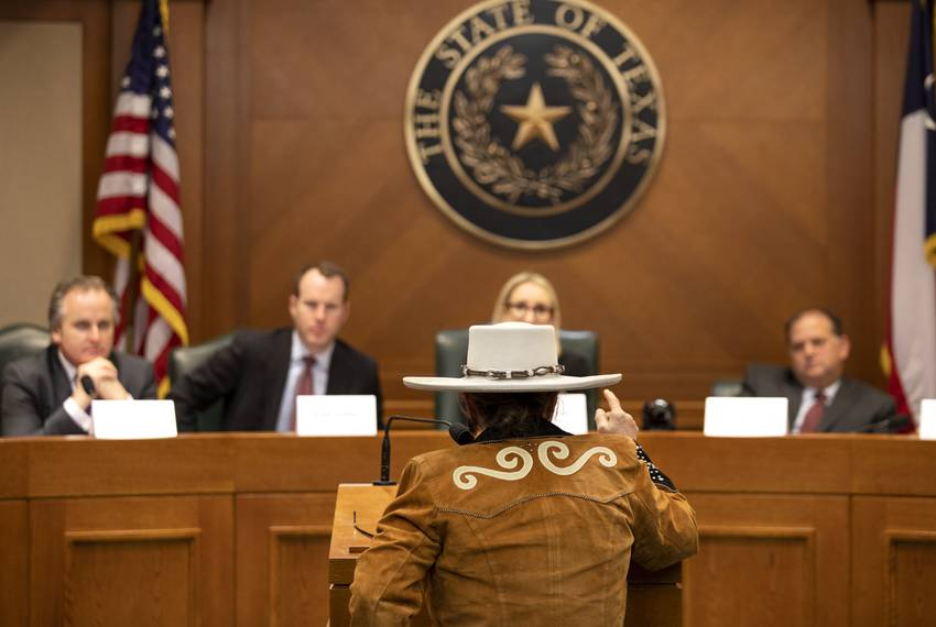 Dr. Alma Arredondo addresses the State Preservation Board at the Capitol on Jan. 25, 2019. Arredondo argued the state erre...