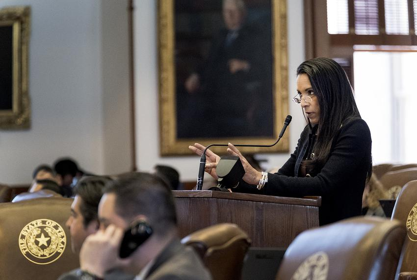 State Rep. Dawnna Dukes, D-Austin, speaks on the House floor during the budget debate on April 6, 2017.