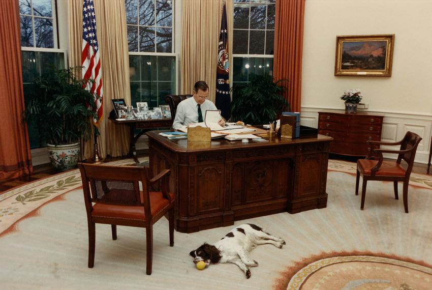 President George H. W. Bush at work in the Oval Office with his dog Millie.