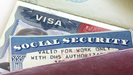 Visa denial rates for highly skilled workers are on the rise. Small...
