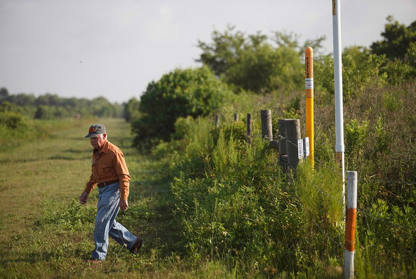 David Holland walks among the dozens of pipeline markers scattered across his Beaumont-area farm.