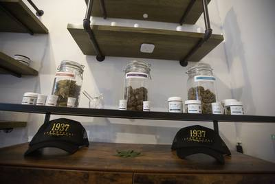 Custom Botanical Dispensary in Austin, Texas.