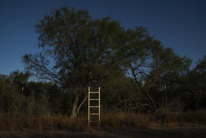 Mendoza has placed approximately 300 ladders on his 400 acre ranch so that people that are crossing the border don't damage …