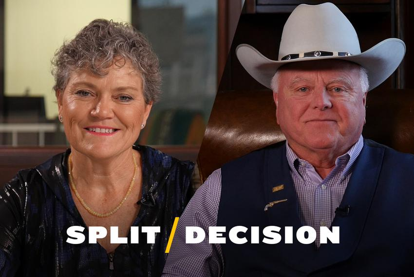Democrat Kim Olson is challenging Texas Agriculture Commissioner Sid Miller in his bid for re-election.
