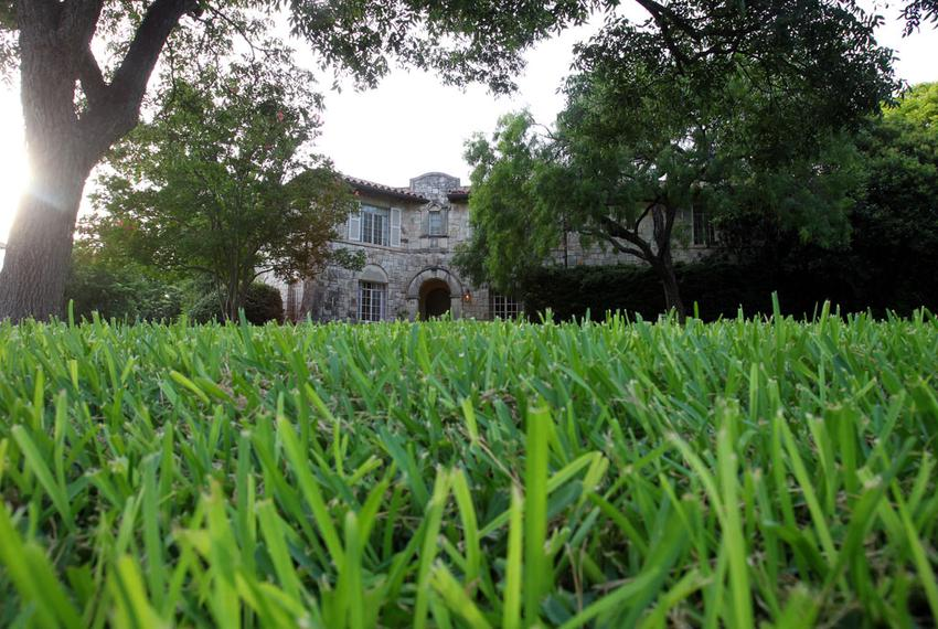 A green lawn in the Olmos Park neighborhood of San Antonio, shown on June 5, 2012.
