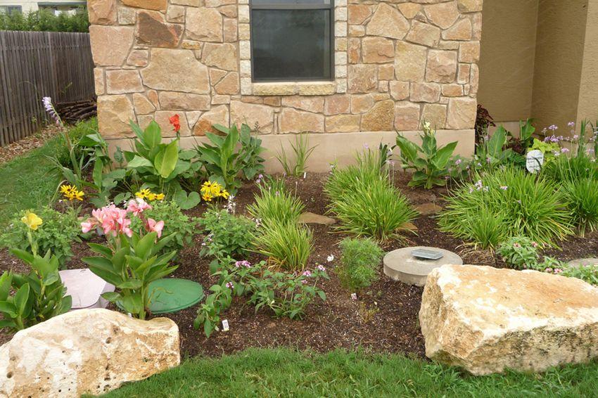 A xeriscaped garden in Austin, TX