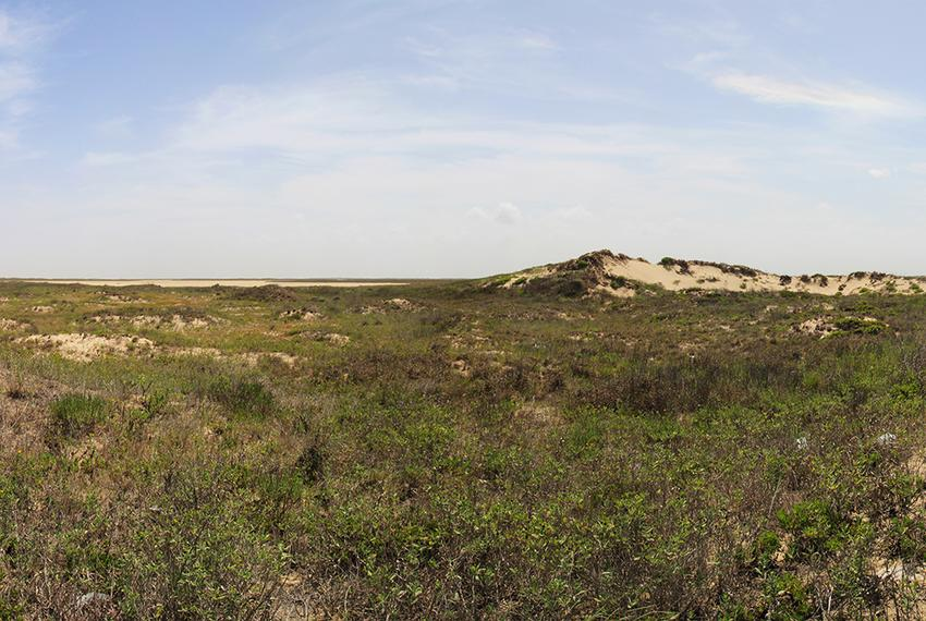 Boca Chica State Park in Brownsville, Texas.