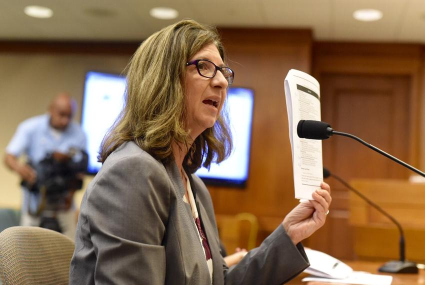 Ginger Goodin, a senior research engineer and director of the Texas Transportation Institute at Texas A&M, testified befor...