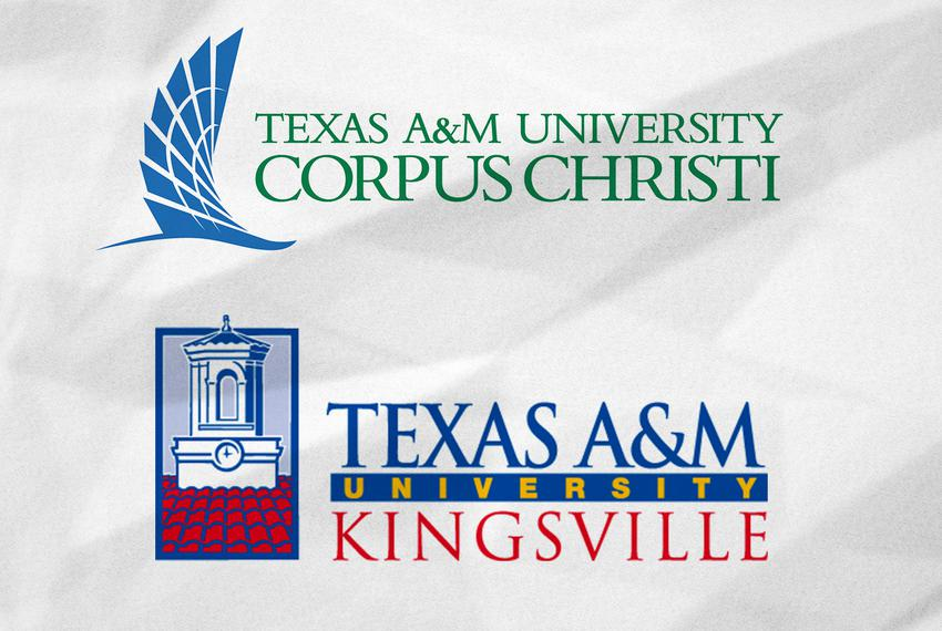 The Texas A&M University System is considering merging Texas A&M University - Corpus Christi and Texas A&M University - Ki...