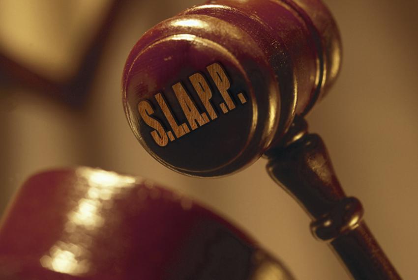 """SLAPP:  """"strategic lawsuit against public participation."""""""